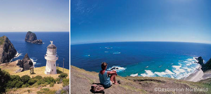 Cape Reinga (Northland Region, North Island of New Zealand)