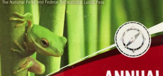 Annual U.S. National Park Pass, valid for all National Parks and most federal recreation sites