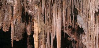 Chinese Theatre / Carlsbad Caverns National Park in New Mexico, USA (photo license www.travel1000places.com)