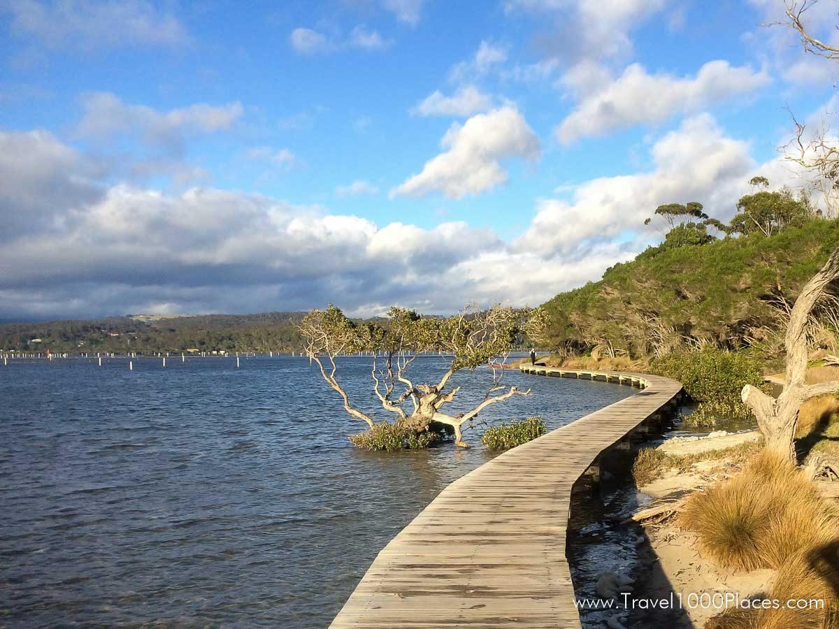Boardwalk in Merimbula, NSW, Australia