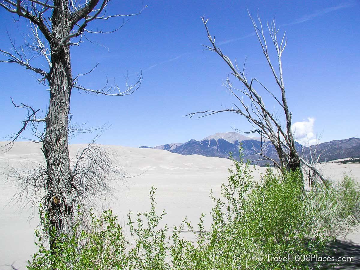 Great Sand Dunes National Park, Colorado, USA