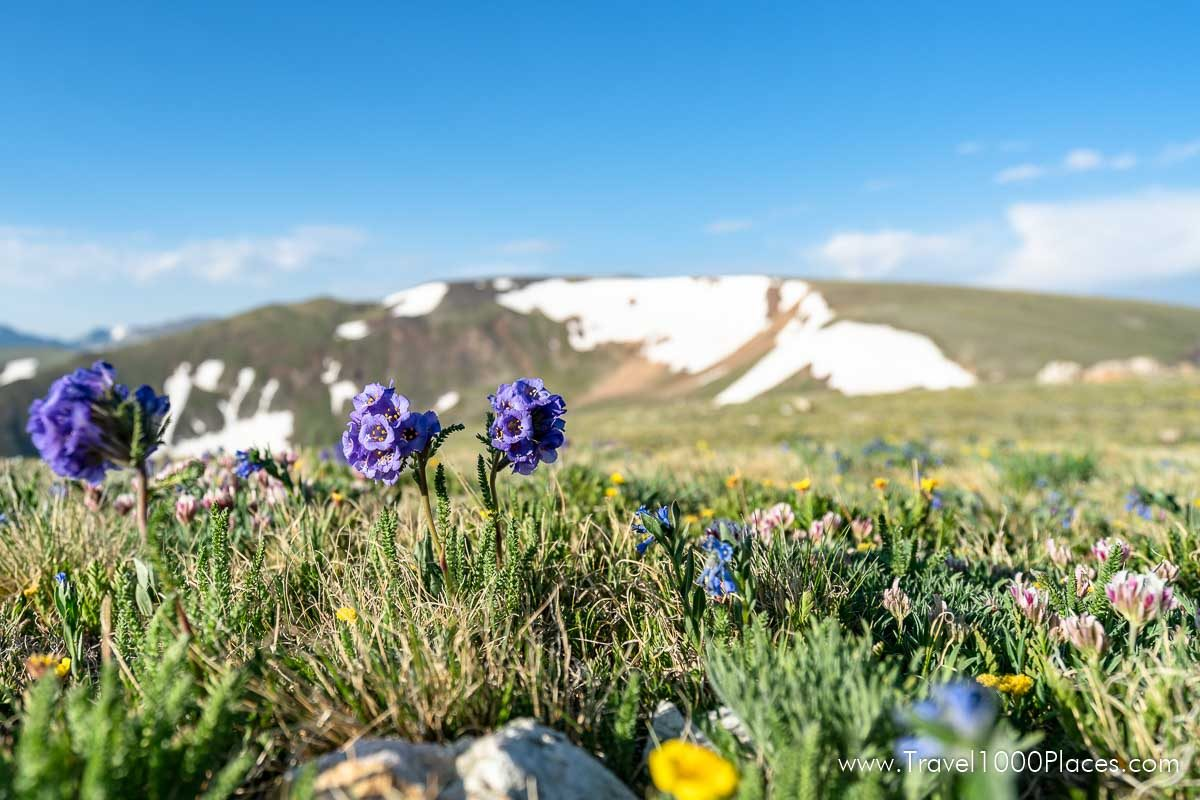 Rocky Mountain National Park is just an hour away from Boulder, Colorado.