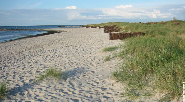 Beach in Kiel: Heidkate Ostuferstrand