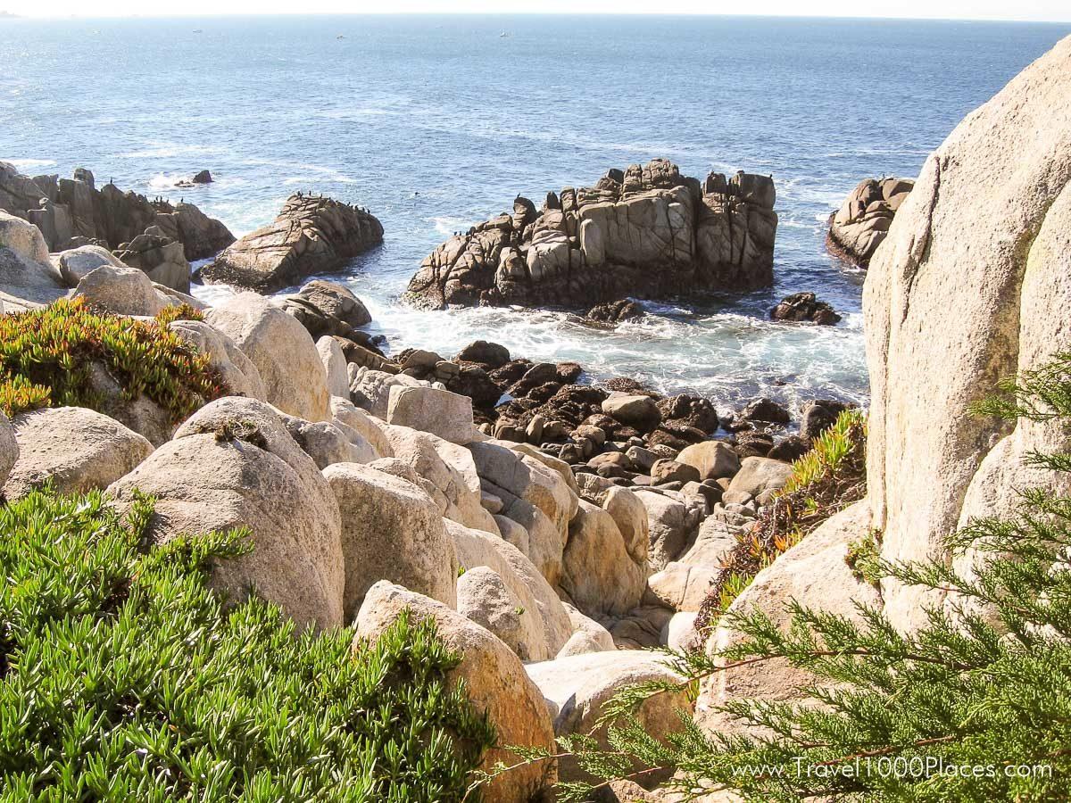 California HIghway 1 Coastline