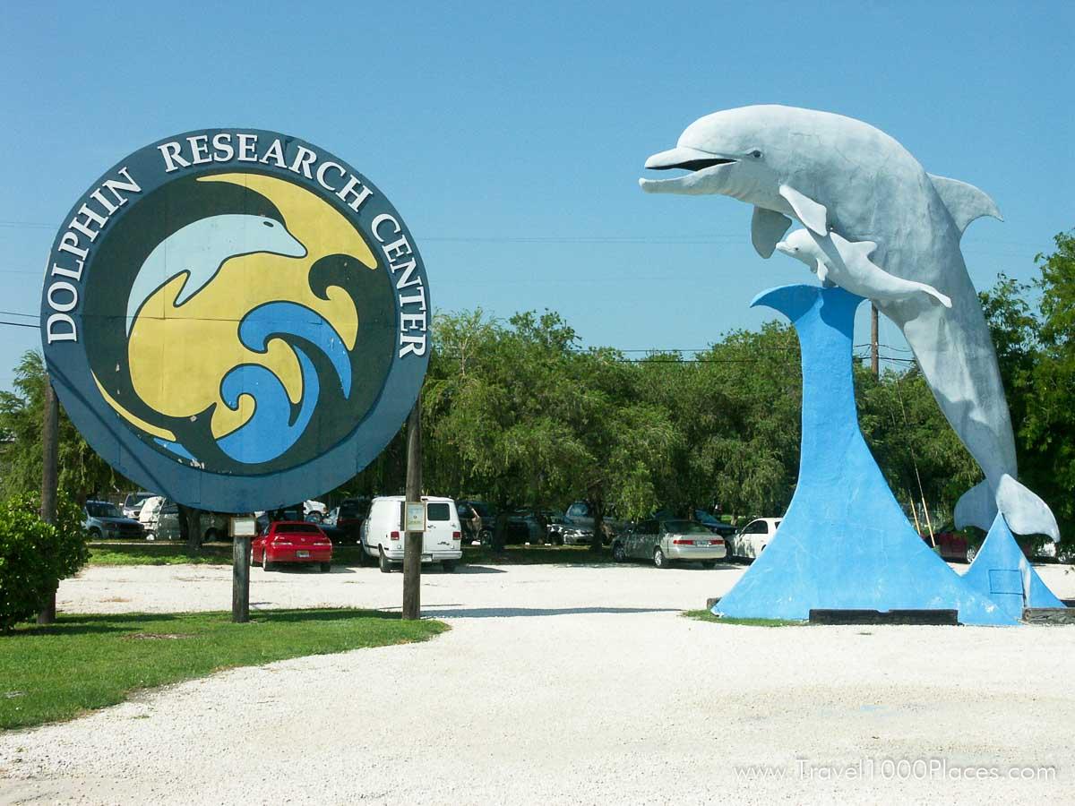 Dolphin Research Center, Grassy Key, Florida Keys