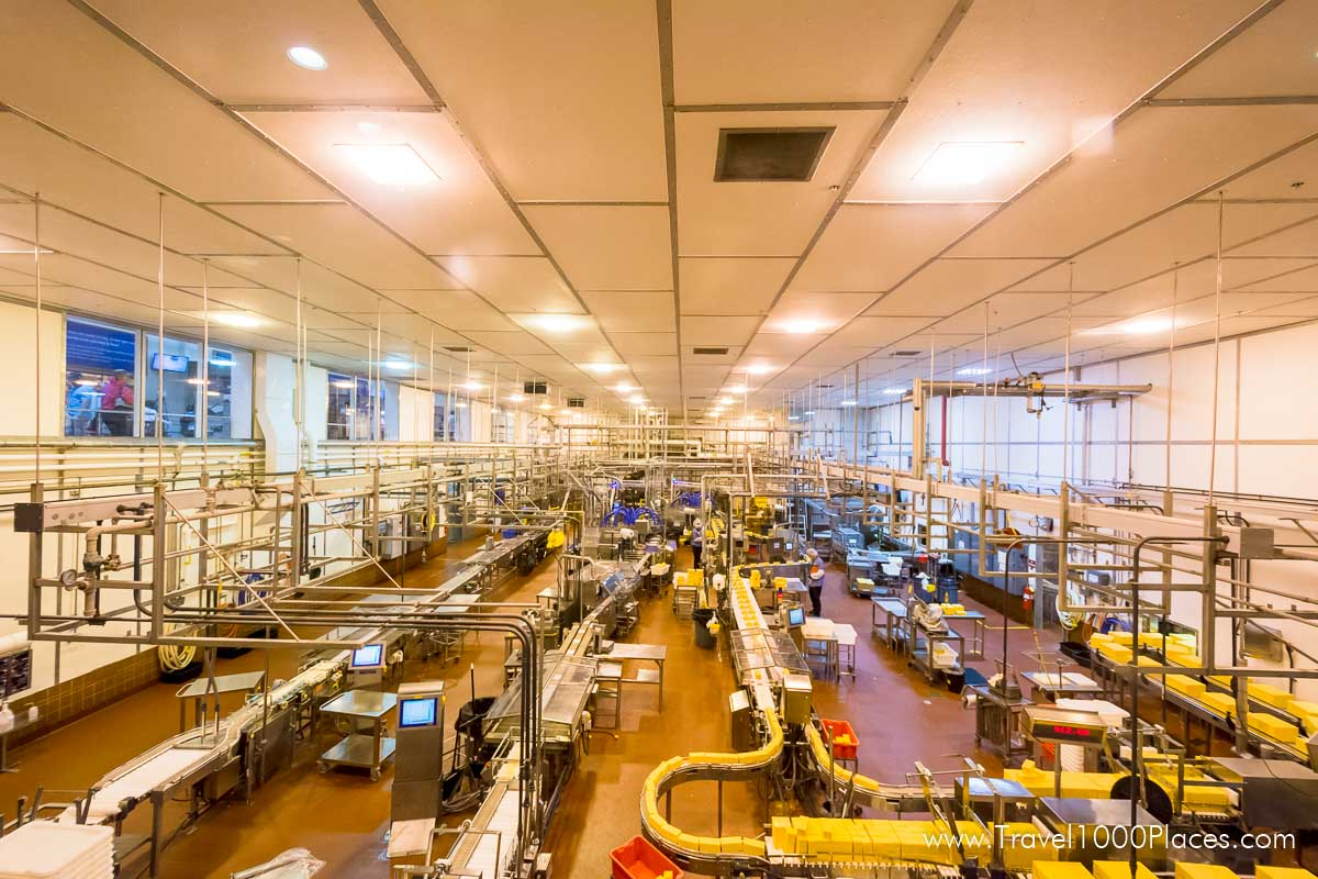 Tillamook production lines