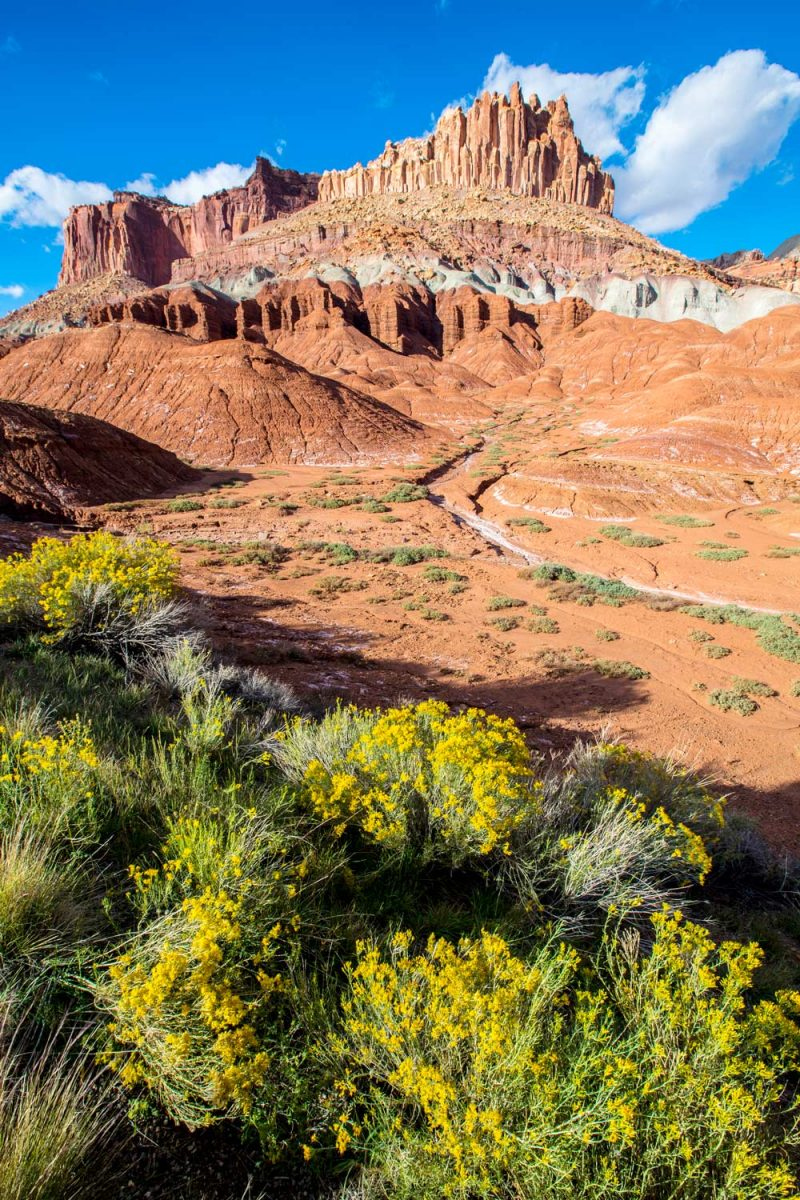 The Castle, Capitol Reef National Park, Utah, USA [photo: NPS/Jacob Frank]