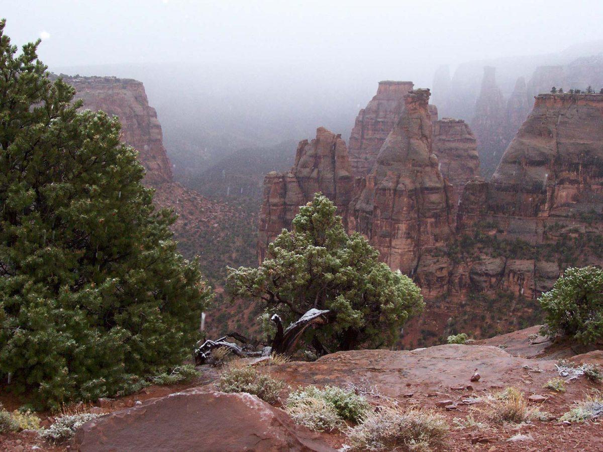 Colorado National Monument -- Foggy Monument Canyon [photo: NPS]