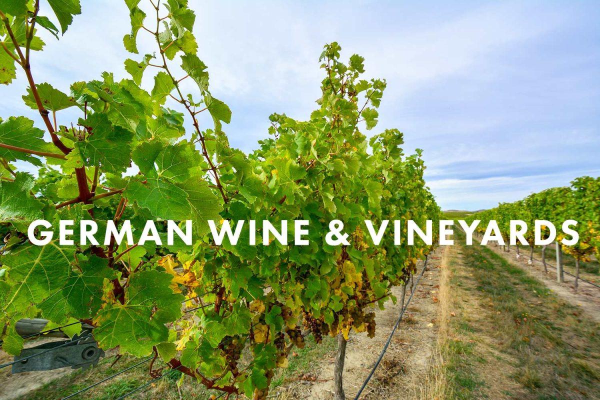 German Wine and Regions