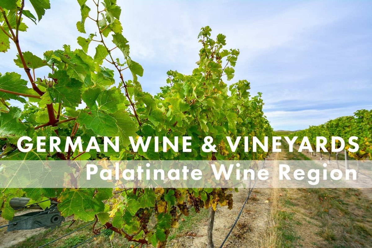 Palatinate Wine Region -- German Wine and Regions