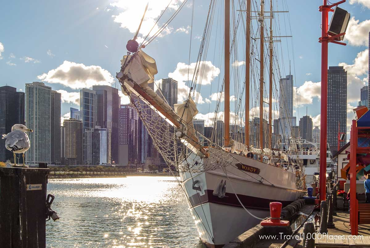 Chicago Navy Pier: view of the skyline