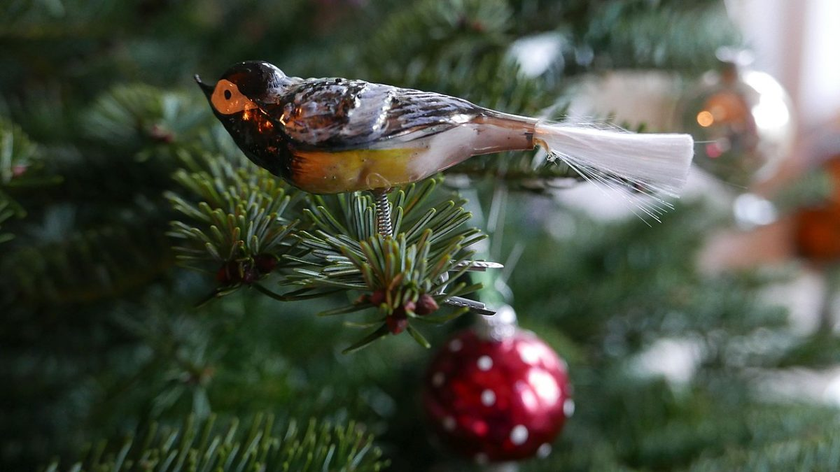 Glass bird Christmas ornament from Lauscha [photo: Geolina163, CC BY-SA 4.0 https://creativecommons.org/licenses/by-sa/4.0, via Wikimedia Commons]