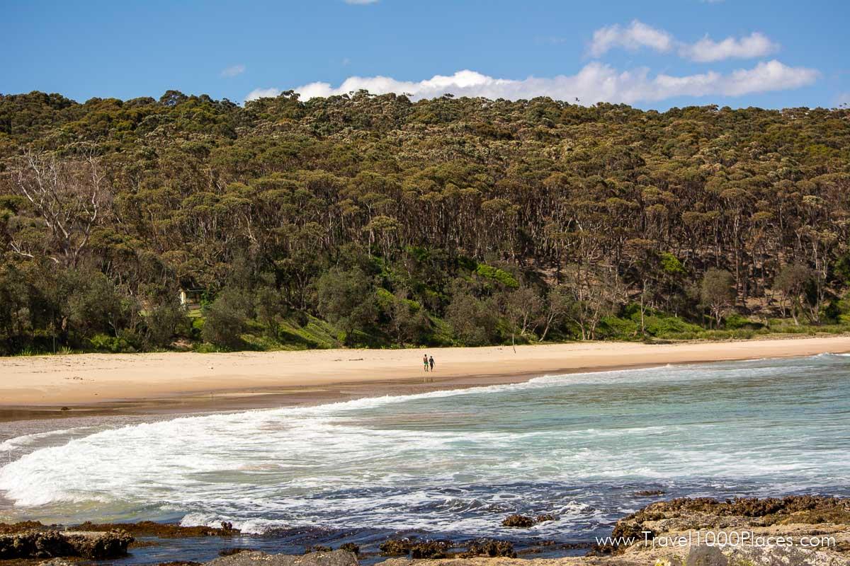 Murramarang National Park (Australia-NSW) near Batemans Bay: Depot Beach and Pebbly Beach
